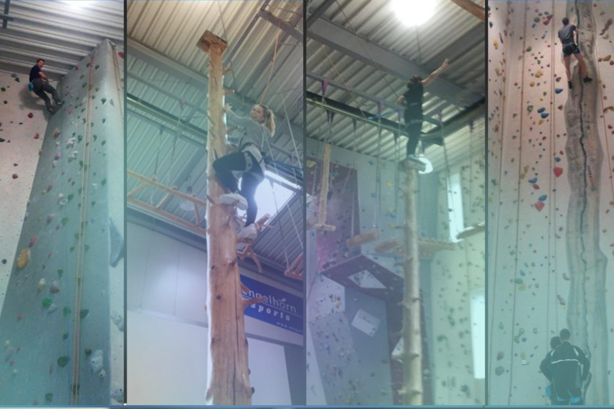 Infocient Teamevent Kletterhalle