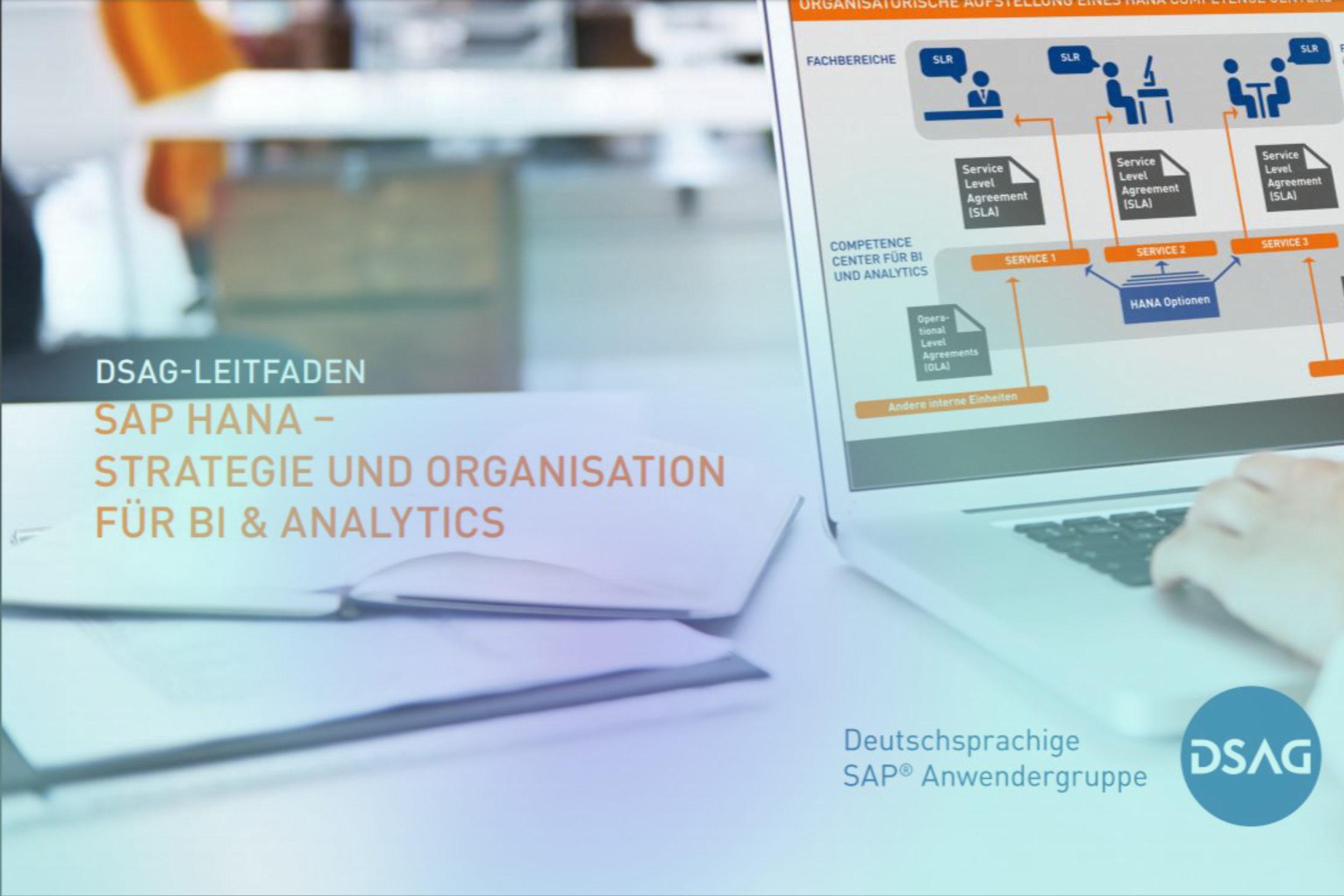 Cover des DSAG Leitfadens für SAP HANA