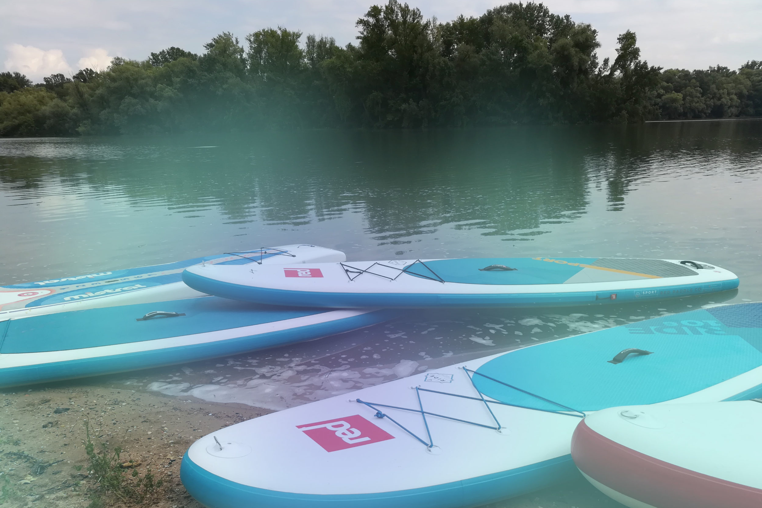 Infocient Teamevent Stand up Paddling Boards am Ufer