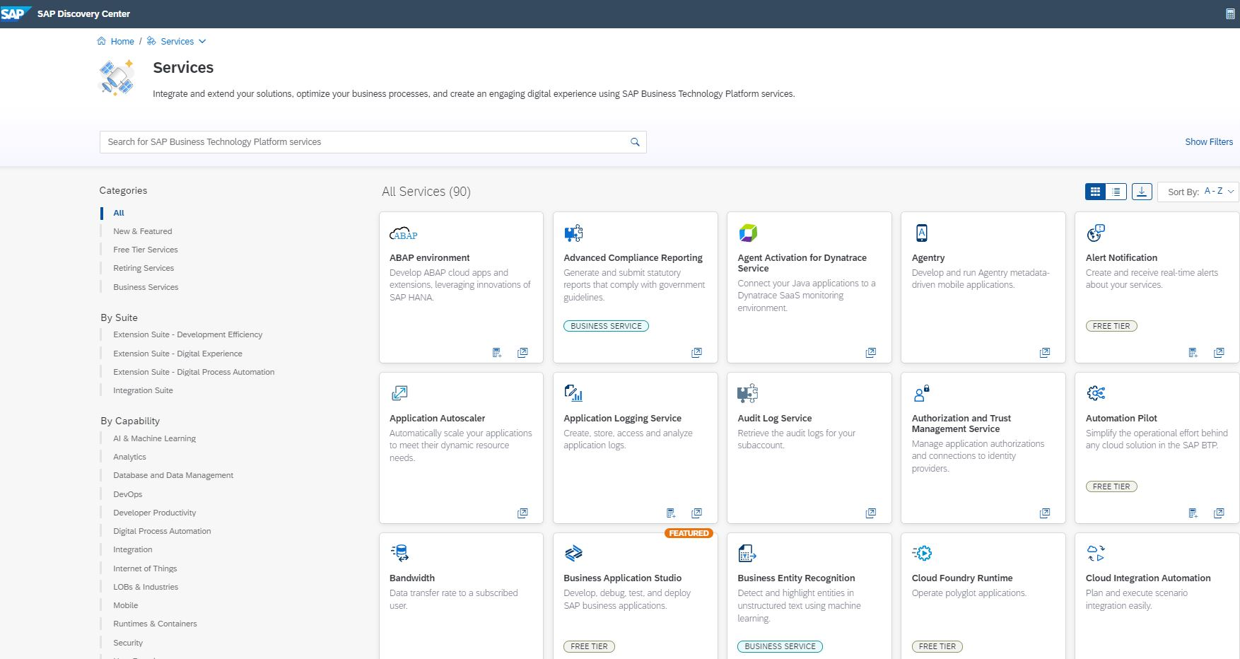 Screenshot der SAP BTP Services